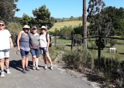 A Stud farm on a wine-walk